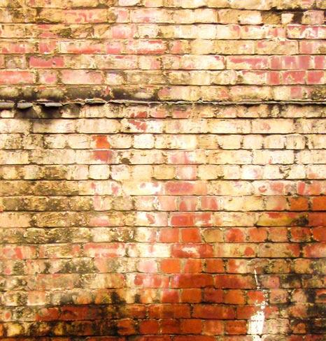 rising damp treatment brixham